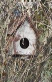 Un alimentador de los pájaros Imágenes de archivo libres de regalías