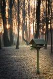 Un alimentatore di legno e congelato dell'uccello in un parco durante il sunri arancio immagini stock libere da diritti