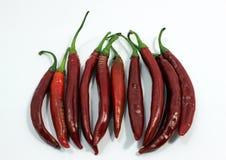 Un allineamento dei peperoncini rossi rossi Immagine Stock Libera da Diritti