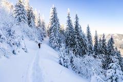 Un alpinista maschio che cammina in salita su un ghiacciaio Alpinista sulla a Immagini Stock Libere da Diritti