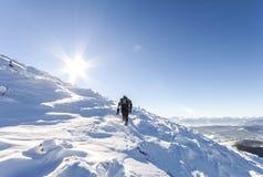 Un alpinista maschio che cammina in salita su un ghiacciaio Reac dell'alpinista Immagine Stock