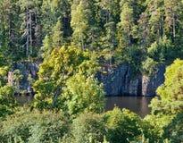 Un'alta riva rocciosa, alberi sulle rocce Albero nel campo Immagini Stock
