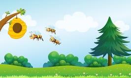 Un alveare sopra la collina con tre api Immagini Stock