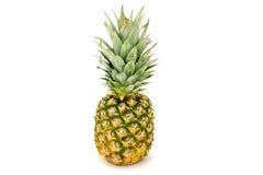 Un ananas Fotografie Stock