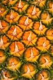 Un ananas, ananas. Photos libres de droits