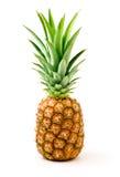Un ananas mûr Photo libre de droits