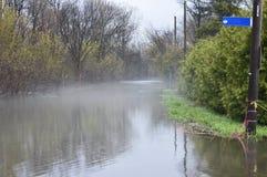 Un'anatra nuota, nella distanza, attraverso una via nebbiosa in Gatineau, durante l'inondazione della primavera di 2017 Fotografie Stock
