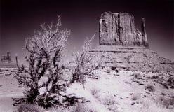 Un angolo della valle del monumento, Utah fotografie stock libere da diritti