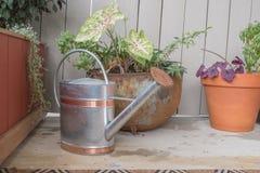 Un annaffiatoio si siede accanto ad alcuno le piante di recente innaffiate fotografia stock