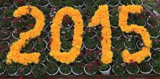 Un anno di 2015, a forma di dal fiore giallo Fotografie Stock Libere da Diritti