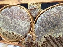 Un apicultor y su panal imagenes de archivo