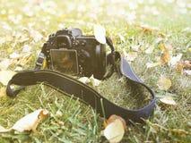 Un appareil-photo sur l'herbe, automne, feuilles jaunes, Image stock