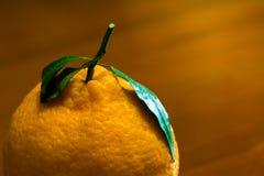 Un'arancia organica giapponese del dekopon sui precedenti di legno Immagine Stock Libera da Diritti
