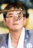Un arbitre observant le combat de deux araignées Images libres de droits