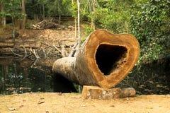 Un arbre a été coupé formé comme un coeur Photos stock
