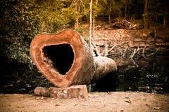 Un arbre a été coupé formé comme un coeur fait avec un filtre mou Photographie stock libre de droits