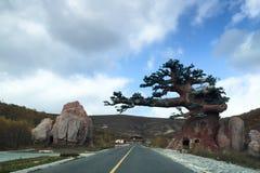 Un arbre artificiel sur la route Images stock