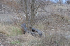 Un arbre dans une décharge Photo stock
