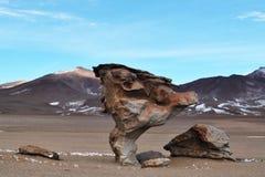 Un arbre en pierre Photo stock
