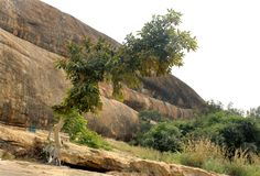 Un arbre et une colline avec le ciel du complexe sittanavasal de temple de caverne Photo stock