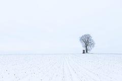 Un arbre isolé avec une surveillance de chasse sur un champ avec le duri de neige Photos libres de droits