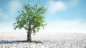 Un arbre s'élevant en ciel bleu d'anf ensoleillé de temps illustration de vecteur
