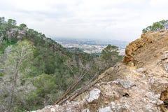 Un arbre tombé sur une colline photographie stock libre de droits