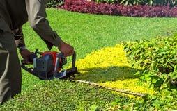 Un arbusto del ajuste del hombre con el condensador de ajuste de seto Fotografía de archivo libre de regalías