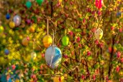 Un arbusto floreciente con los huevos pl?sticos coloridos imágenes de archivo libres de regalías