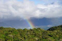 Un arcobaleno sopra i precedenti più scuri della nuvola con gli alberi soleggiati verdi sulla priorità alta Fotografia Stock