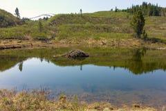 Un'area ha estratto oro all'insenatura della lontra vicino al atlin, bc immagini stock