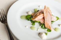Un arrancador con los pedazos de color salmón, espinaca, salsa del pepino Foto de archivo