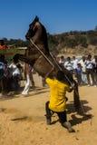 Un'arte dello spettacolo del cavallo Fotografia Stock