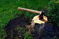 Un'ascia su un troncone Immagine Stock
