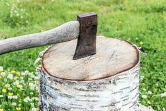Un'ascia sul tronco di albero Immagine Stock Libera da Diritti