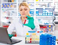 Un assistente di laboratorio della donna usa un samp del sangue della ricerca del computer immagine stock