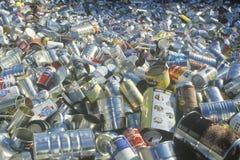 Un assortimento di latte di alluminio vuote che aspettano riciclaggio a St. Louis, Missouri Immagini Stock Libere da Diritti