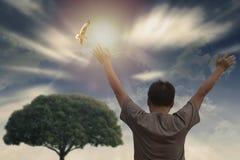 Un aumento del hombre da el cielo ascendente y hermoso con el vuelo del pájaro Foto de archivo