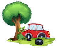 Un'automobile rossa che urta su un albero Fotografia Stock