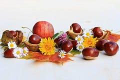 Un autunno colourful con i fiori, le castagne e le mele fotografie stock
