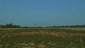 Un avión que aterriza en una pista larga almacen de video