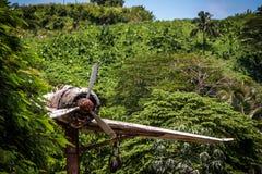 Un avion de la deuxi?me guerre mondiale en Papouasie-Nouvelle-Guin?e images libres de droits