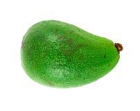 Un avocado Fotografie Stock Libere da Diritti