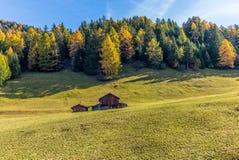 Un'azienda agricola a distanza sulle alpi svizzere in autunno Immagini Stock Libere da Diritti