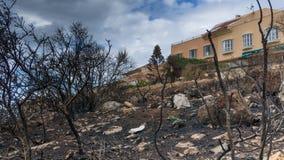 Un bâtiment en vue des arbres de brûlure dans l'avant du mauntain Photo libre de droits