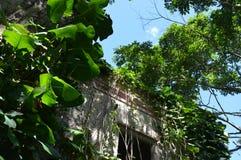 Un bâtiment mystérieux abandonné dans la jungle Photos libres de droits