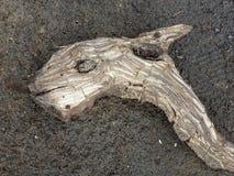 Un bâton étrangement incurvé aiment la tête d'un monstre inconnu photos libres de droits