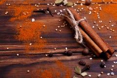 Un bâton de cannelle avec des épices et des graines image libre de droits
