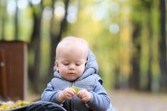 Un bébé garçon an en parc d'automne Image stock