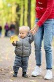 Un bébé garçon an en parc d'automne apprenant à marcher avec sa mère Images stock